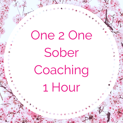One 2 One Sober Coaching - 1 Hour