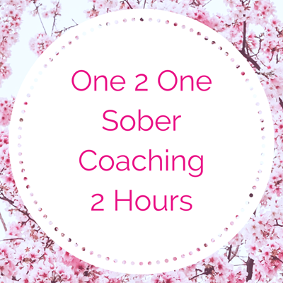 One 2 One Sober Coaching - 2 Hours